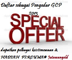 special offer 2013